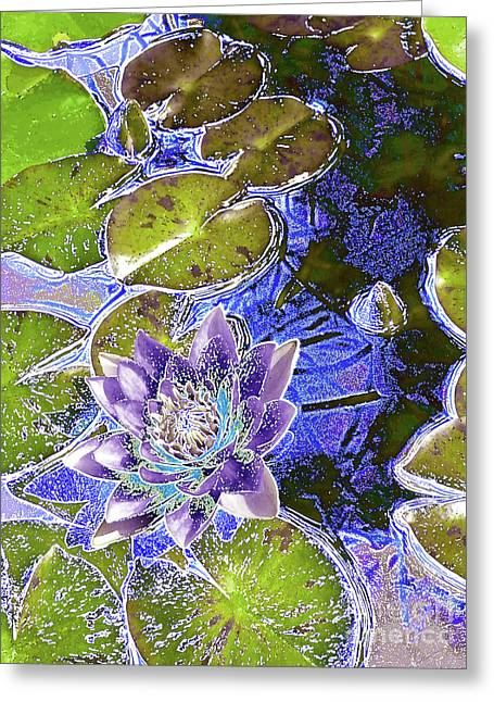 Water Lily Greeting Card by Robert Ball