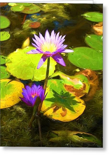 Water Lily Van Goh Greeting Card