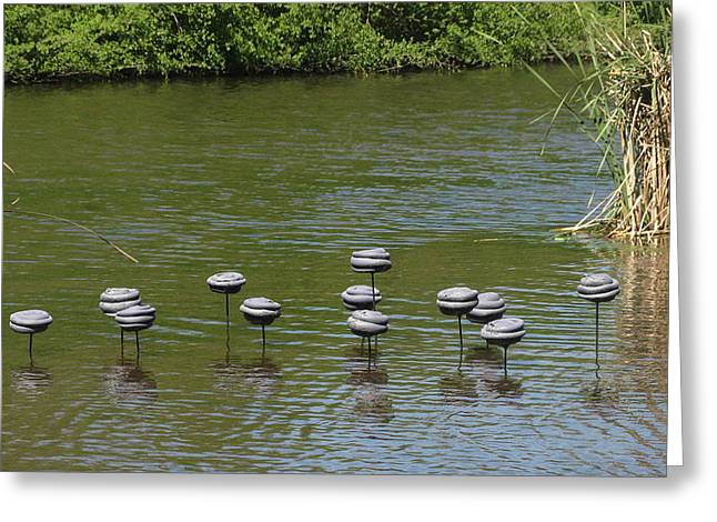 River Ceramics Greeting Cards - Water Mushrooms Greeting Card by Dawn Whitehand
