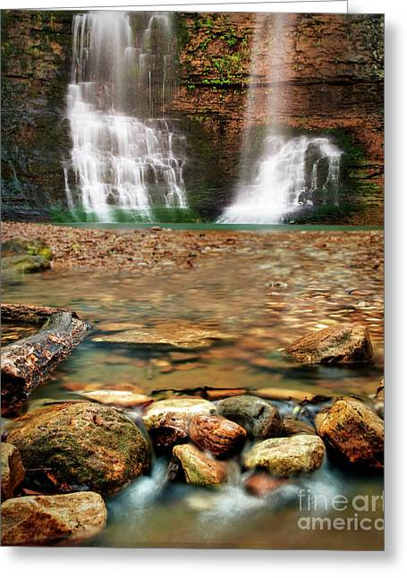 Water Path Greeting Card by Tamyra Ayles