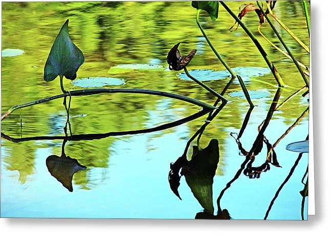 Water Plants Greeting Card by Debbie Oppermann