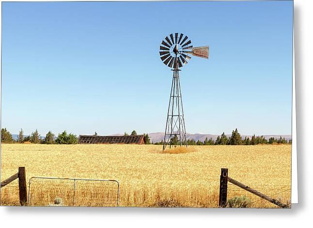 Water Pump Windmill At Wheat Farm In Rural Oregon Greeting Card by David Gn
