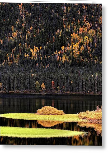 Calm Waters Digital Greeting Cards - Water reflections in autumn Greeting Card by Mark Duffy