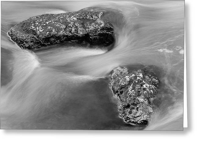Water Greeting Card by Scott Meyer