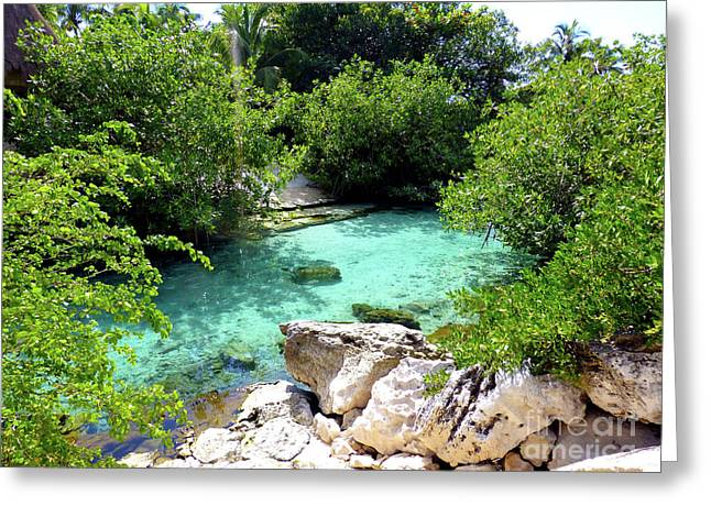 Greeting Card featuring the photograph Water Shallows by Francesca Mackenney