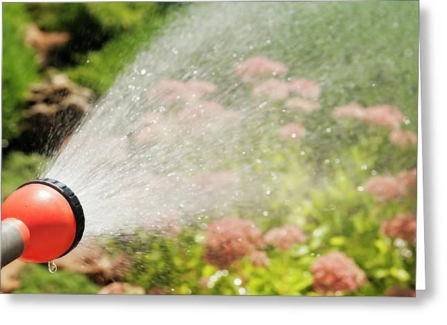Water Splashes Greeting Card