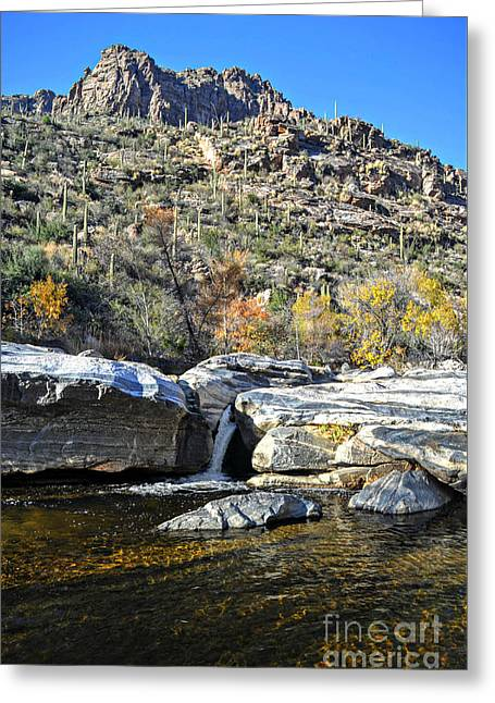 Water Spout Below Ridge In Sabino Canyon Greeting Card by Rincon Road Photography By Ben Petersen