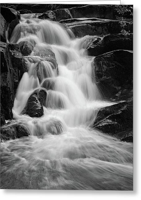 water stair close to the Heinrich Heine hiking way, Harz Greeting Card by Andreas Levi