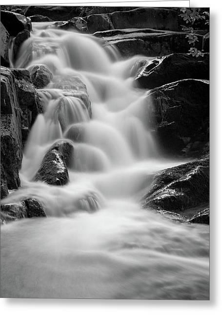 water stair in Ilsetal, Harz Greeting Card