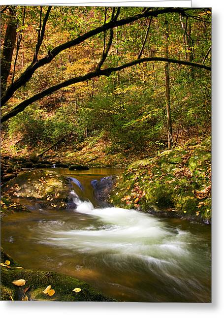 Greeting Card featuring the photograph Water Swirl by Bob Decker