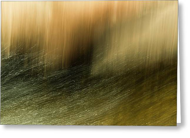 Greeting Card featuring the photograph Water Tresses by Deborah Hughes