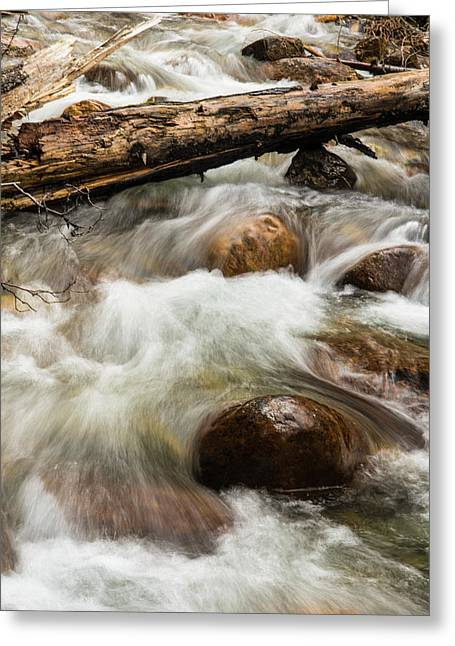 Greeting Card featuring the photograph Water Under The Bridge by Alex Lapidus
