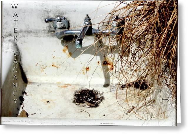 Water Vacancy  Greeting Card by Steven Digman