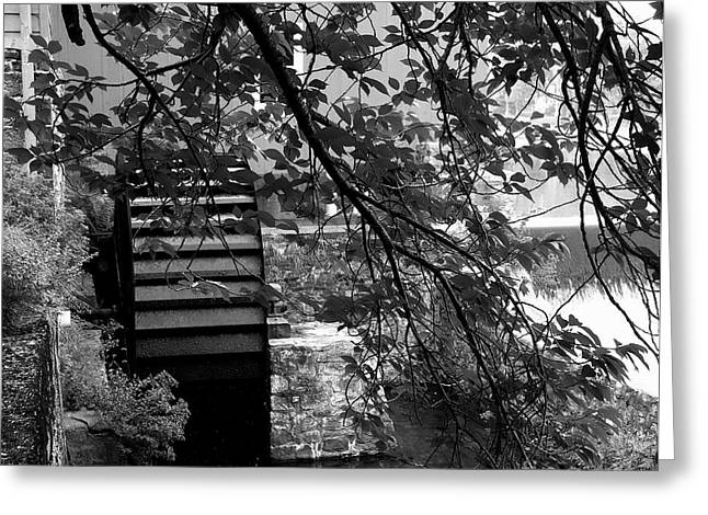 Water Wheel - Black And White Greeting Card by Jacqueline M Lewis