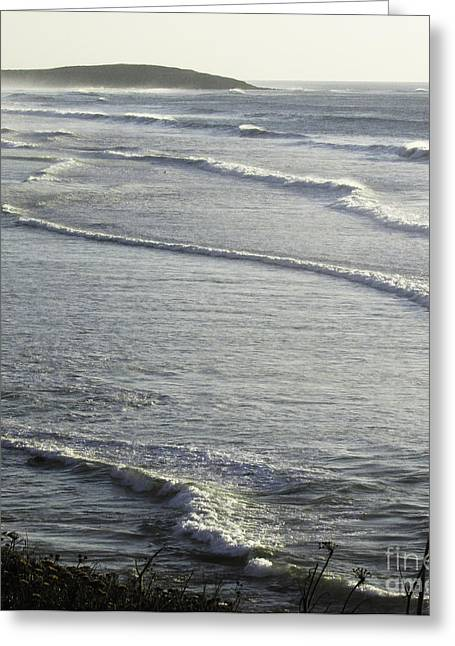 Water World Greeting Card