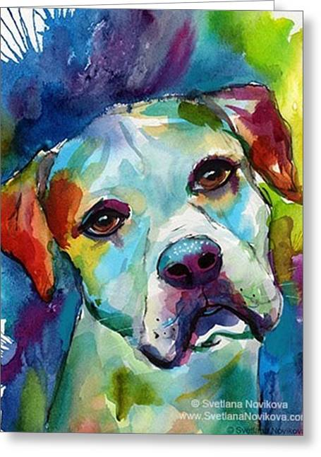 Watercolor American Bulldog Painting By Greeting Card