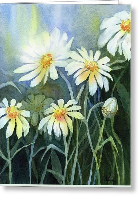 Daisies Flowers  Greeting Card