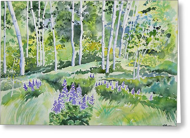 Watercolor - Early Summer Aspen And Lupine Greeting Card