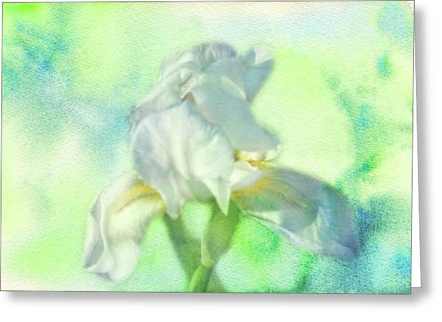 Watercolor Iris Greeting Card by Joan Bertucci