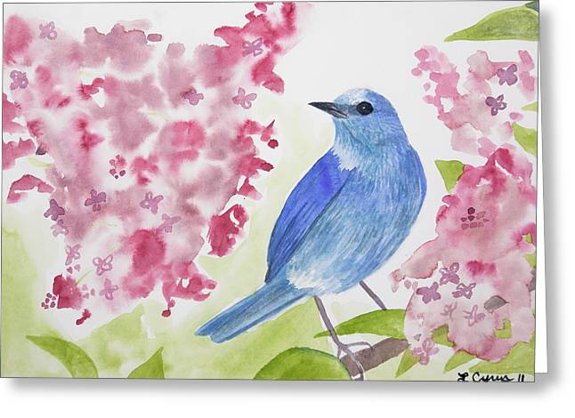 Watercolor - Mountain Bluebird Greeting Card
