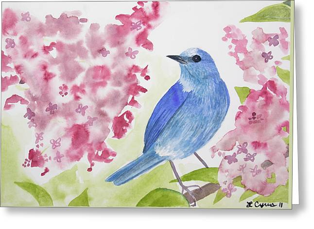 Cascade colors greeting cards watercolor mountain bluebird greeting card m4hsunfo