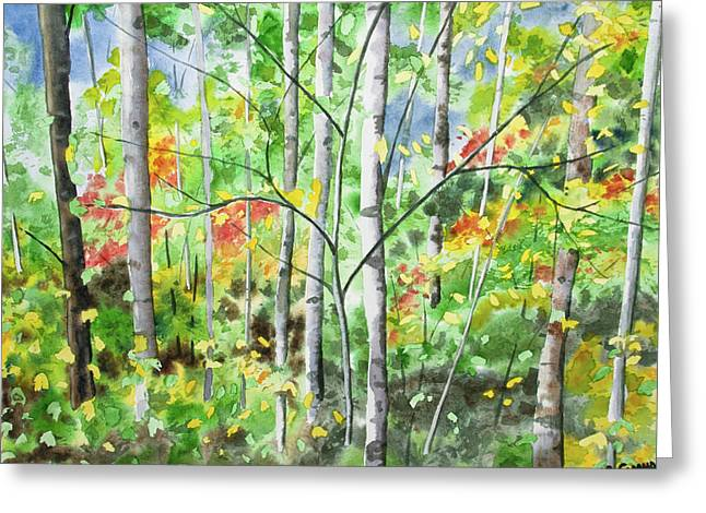 Greeting Card featuring the painting Watercolor - Northern Forest by Cascade Colors