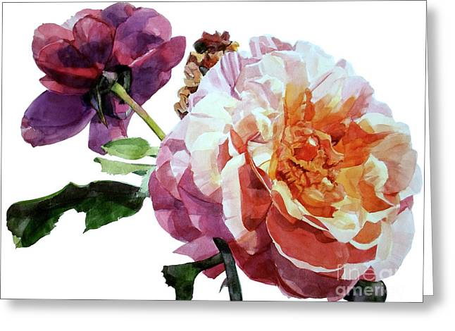 Watercolor Of Two Roses In Pink And Violet On One Stem That  I Dedicate To Jacques Brel Greeting Card