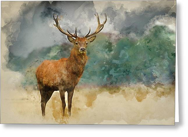 Watercolor Painting Of Portrait Of Majestic Red Deer Stag In Aut Greeting Card