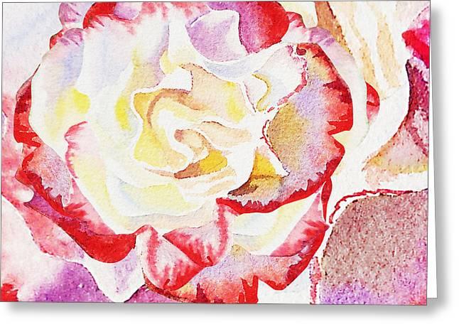 Watercolor Rose Close Up  Greeting Card