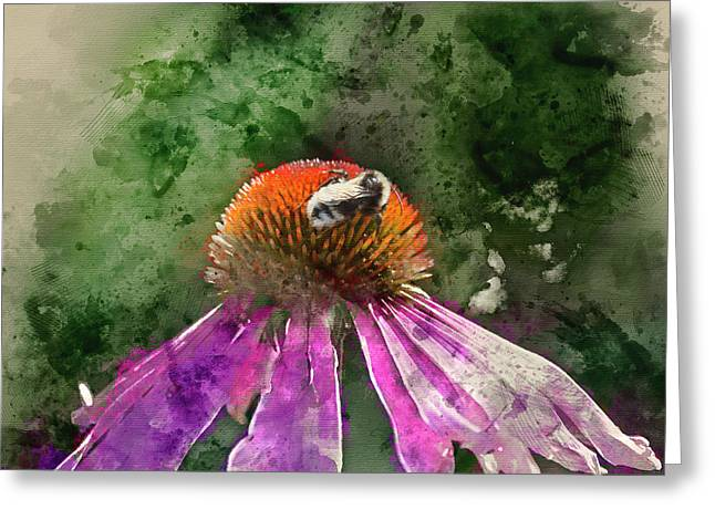 Watercolour Painting Of Bumble Bee Pollenating On Echinacea Pall Greeting Card