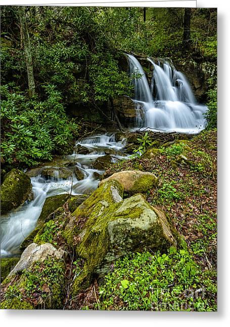 Waterfall Along Back Fork Of Elk River Greeting Card