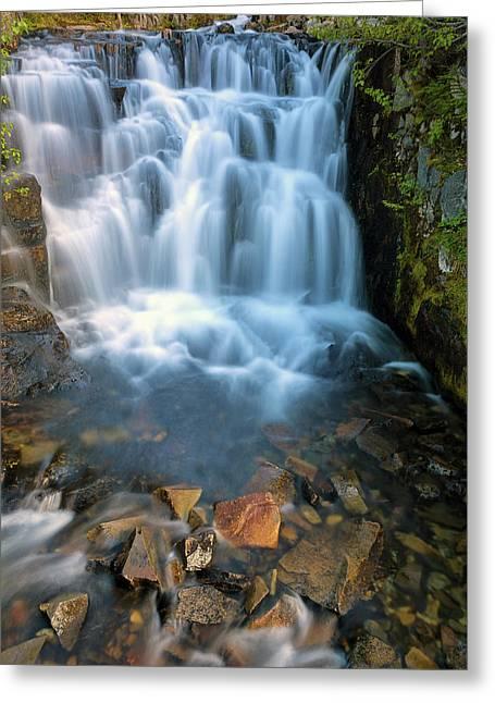 Waterfall Along Sunbeam Creek In Mt Rainier National Park Greeting Card