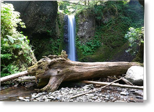 Waterfall And A Log Greeting Card