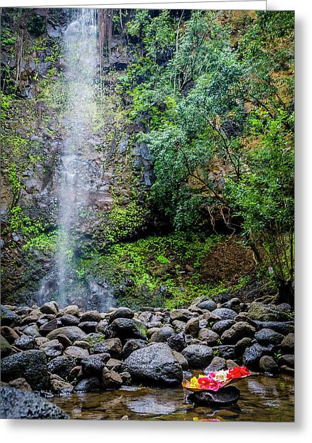 Waterfall And Flowers Greeting Card
