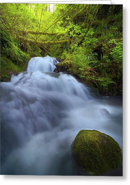 Waterfall At Shepperds Dell Falls Greeting Card by David Gn