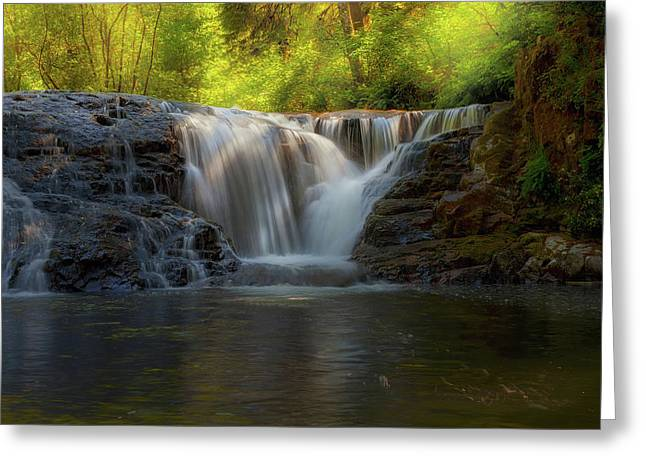 Waterfall At Sweet Creek Hiking Trail Complex Greeting Card by David Gn