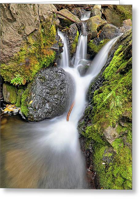 Waterfall Atop Wolf Creek Pass - Colorado - Nature Greeting Card by Jason Politte