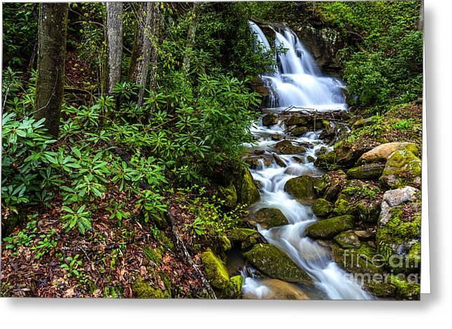 Waterfall Back Fork Of Elk River Greeting Card