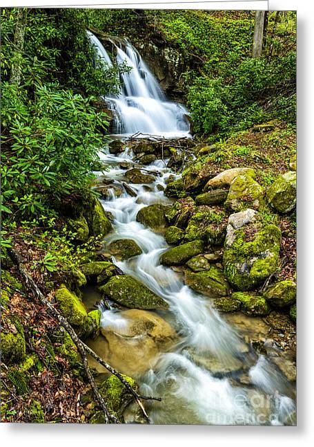 Waterfall Back Fork Of Elk Greeting Card