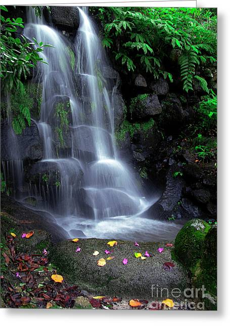 Green. Nature Greeting Cards - Waterfall Greeting Card by Carlos Caetano