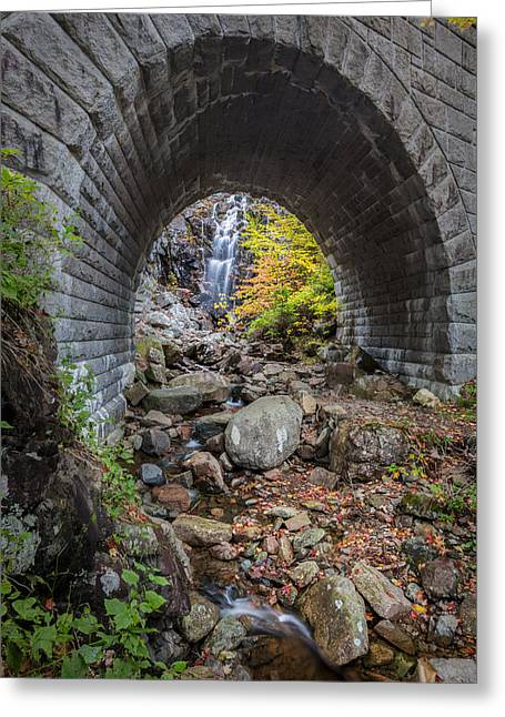 Waterfall In Acadia Greeting Card by Jon Glaser
