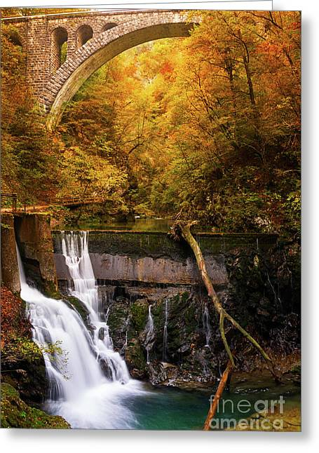 Greeting Card featuring the photograph Waterfall In An Autumn Canyon by IPics Photography