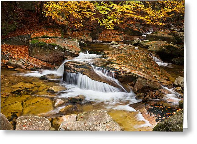 Waterfall In Autumn Scenery Greeting Card