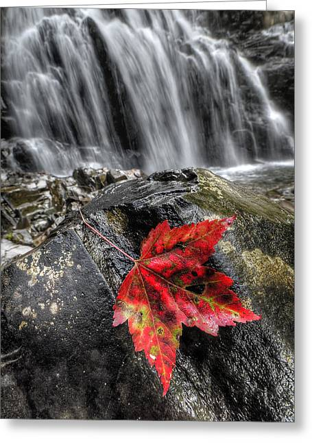 Waterfall In Fall Greeting Card