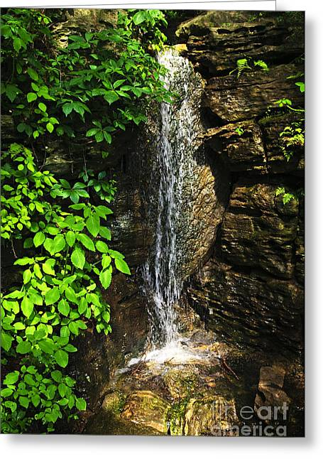 Waterfall In Forest Greeting Card
