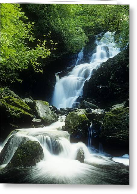 Water Flowing Greeting Cards - Waterfall In Killarney National Park Greeting Card by The Irish Image Collection