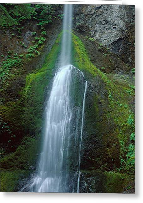 Waterfall In Olympic National Rainforest Greeting Card