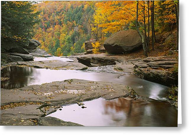 Reflections In River Greeting Cards - Waterfall In The Forest, Kaaterskill Greeting Card by Panoramic Images