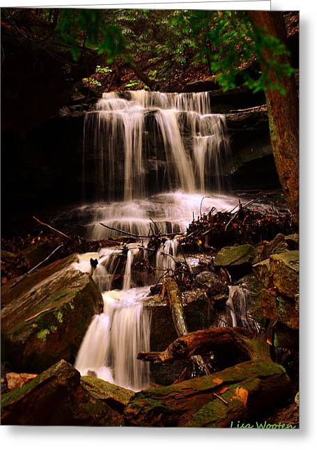 Waterfall Mcconnells Mills State Park Greeting Card