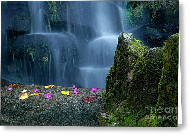 Vibrant Green Greeting Cards - Waterfall02 Greeting Card by Carlos Caetano